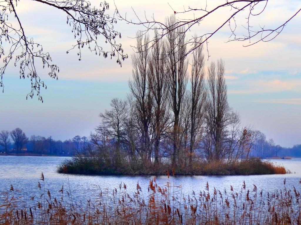 2Jedna z licznych wysepek na Jeziorze Gopło-2