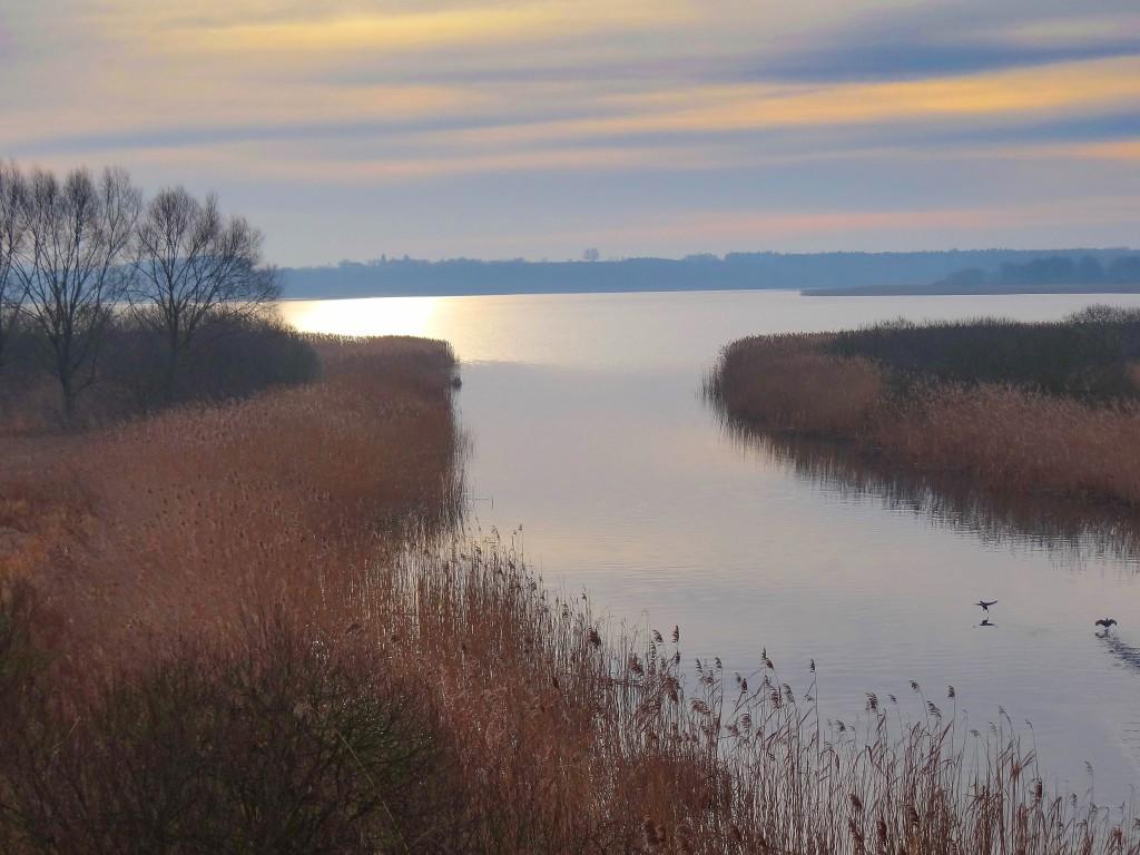 2Wypływająca Noteć z Jeziora Wolickiego-2